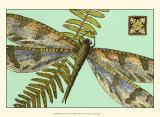 Dragonfly on Aqua I