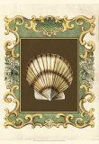 Mermaid's Shells IV
