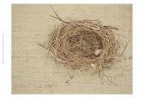 Nesting I