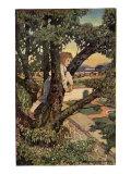 Boy in a Tree  1905