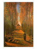 Poplar-Lined Path  1884
