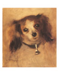 Head of a Dog  1870