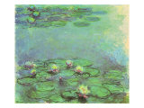 Water Lilies  1914