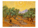 Sun over Olive Grove, 1889 Reproduction d'art par Vincent Van Gogh
