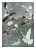 Sea Birds  1913