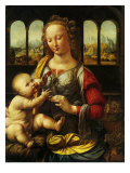 Madonna and Carnation  1478