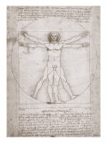 Proportions of the Human Figure According to Vitruvius
