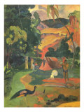 Matamoe  1892