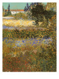 Flowering Garden  1888