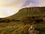 Benbulben  Approx 500M  at Sunset  Near Sligo  County Sligo  Connacht  Republic of Ireland  Europe