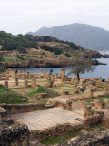 Roman Site of Tipasa  UNESCO World Heritage Site  Algeria  North Africa  Africa