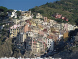 Riomaggiore  Cinque Terre  UNESCO World Heritage Site  Liguria  Italy  Europe