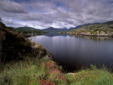 View of Upper Lake  Lakes of Killarney  Ring of Kerry  County Kerry  Munster  Republic of Ireland