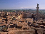 Piazza Del Campo and Palazzo Pubblico  Siena  UNESCO World Heritage Site  Tuscany  Italy  Europe