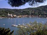 Le Grazie  Near Portovenere in the La Spezia Area  Liguria  Italy  Europe