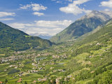 View from Dorf Tyrol over Merano  Towards Reschen Pass and Austria  Western Dolomites  Italy
