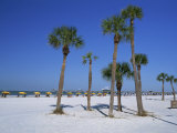Clearwater Beach  Florida  United States of America  North America