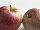 Still Life of Red Apples