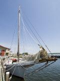 Skipjack Sailing Boat  Chesapeake Bay Maritime Museum  St Michaels  Maryland  USA