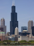 Sears Tower and Skyline  Chicago  Illinois  United States of America  North America