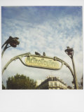 Polaroid of Two Pigeons Sitting on Sign Outside Paris Metro  Paris  France  Europe