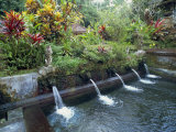 Water Temple  Bali  Indonesia  Southeast Asia
