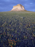 Pawnee Butte  Pawnee National Grassland  Colorado  United States of America  North America