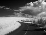 Infra Red Image of Country Road and Dramatic Clouds  Near Pienza  Tuscany  Italy  Europe