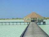 Jetty on the Island of Digofinolu in the Maldive Islands  Indian Ocean