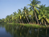 Typical Backwater Scene  Canals and Rivers are Used as Roadways  Kerala  India