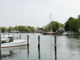 Oxford Bellevue Ferry  Oxford  Talbot County  Tred Avon River  Chesapeake Bay Area  Maryland  USA