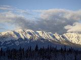 Bosche Range in Winter  Jasper National Park  Rocky Mountains  Alberta  Canada