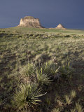 Pawnee Buttes  Pawnee National Grassland  Colorado  United States of America  North America