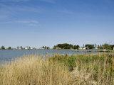 Tilghman Island  Talbot County  Chesapeake Bay Area  Maryland  USA