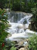 Dunns River Falls  Ocho Rios  Jamaica  West Indies  Caribbean  Central America