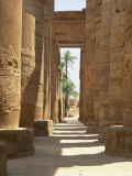 Columns with Hieroglyphs in the Great Hypostyle Hall  Temple of Karnak  Thebes  Egypt