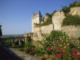 Chateau De Chinon  Indre-et-Loire  Loire Valley  France  Europe