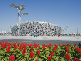 Flowers and the Birds Nest National Stadium in the Olympic Green  Beijing  China