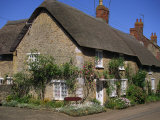 Thatched Cottages with Roses on the Walls at Burton Bradstock in Dorset  England  United Kingdom
