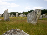 Megalithic Stones Alignments De Kremario  Carnac  Morbihan  Brittany  France  Europe