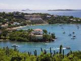 Cruz Bay  St John  US Virgin Islands  West Indies  Caribbean  Central America