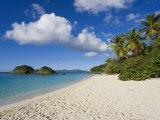 Trunk Bay  St John  US Virgin Islands  West Indies  Caribbean  Central America