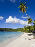 Cinnamon Bay Beach and Palms  St John  US Virgin Islands  West Indies  Caribbean