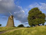 Windmill at Bettys Hope Historic Sugar Plantation  Antigua  Leeward Islands  West Indies  Caribbean