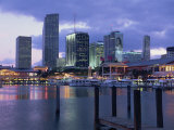 Miami City Skyline from Bayside  Miami  Florida  United States of America  North America