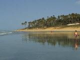 Kotu Beach  Gambia  West Africa  Africa