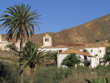 Palm Trees  Houses and Church at Betancuria  on Fuerteventura in the Canary Islands  Spain  Europe