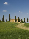 Countryside Near Pienza  Val D'Orcia  Siena Province  Tuscany  Italy  Europe