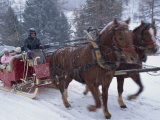 Horse Drawn Sleigh Making for Pontressina in a Snow Storm  in Switzerland  Europe