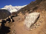 Mani Stones Printed with Tibetan Prayers Beside a Track in Solu Khumbu  Nepal